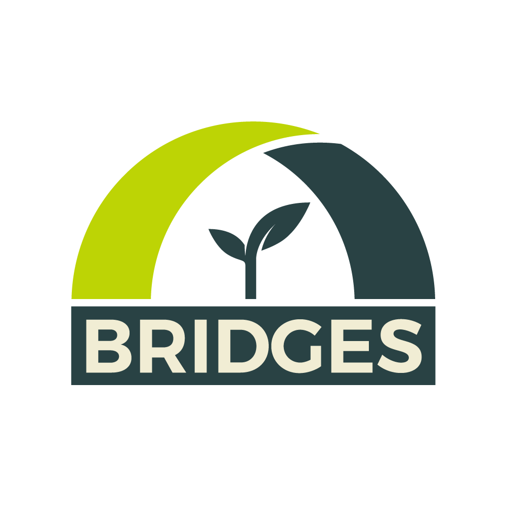 BRIDGES_web_dark_1000x